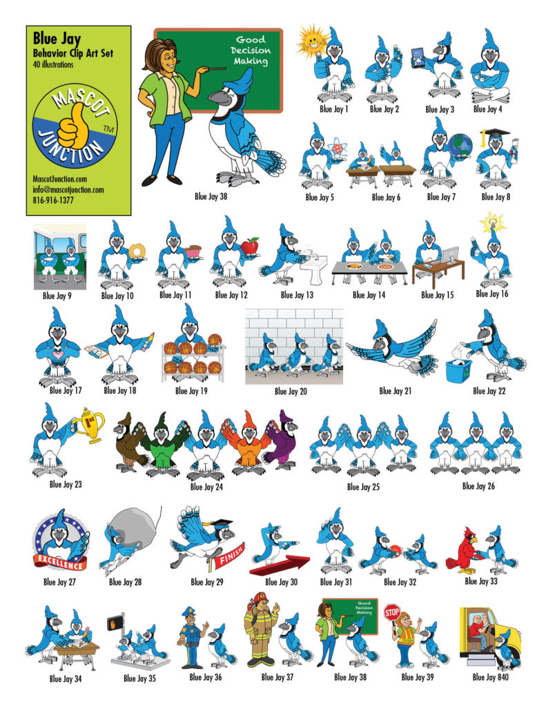 Blue Jay Behavior Clip Art