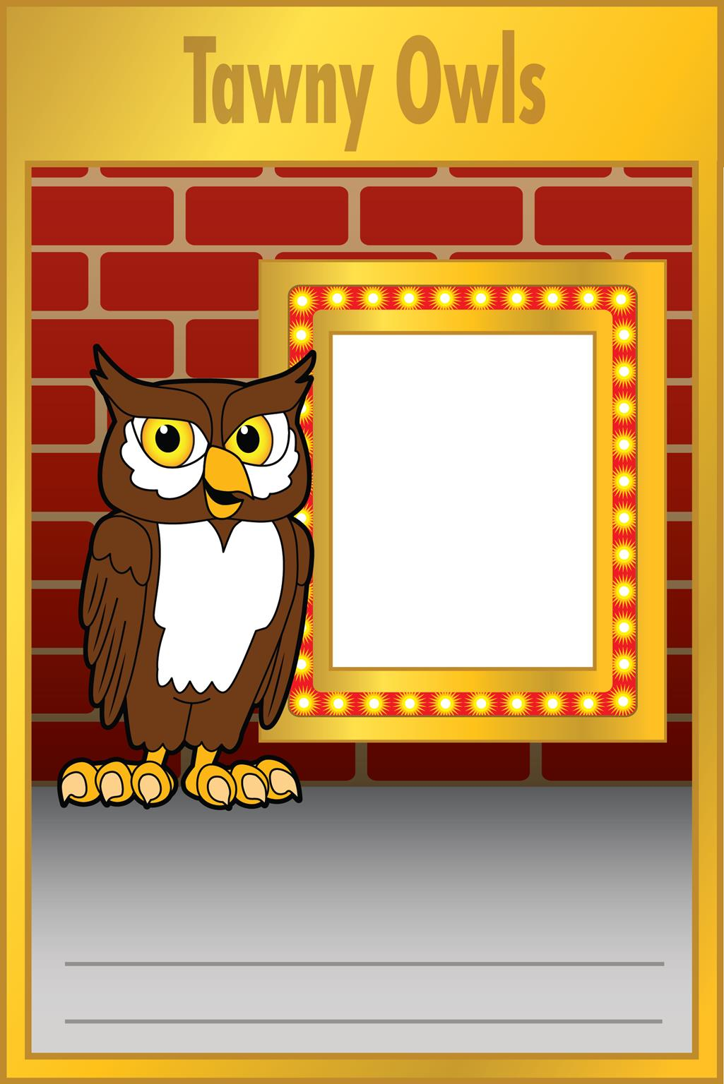 Photo Marquee Owl
