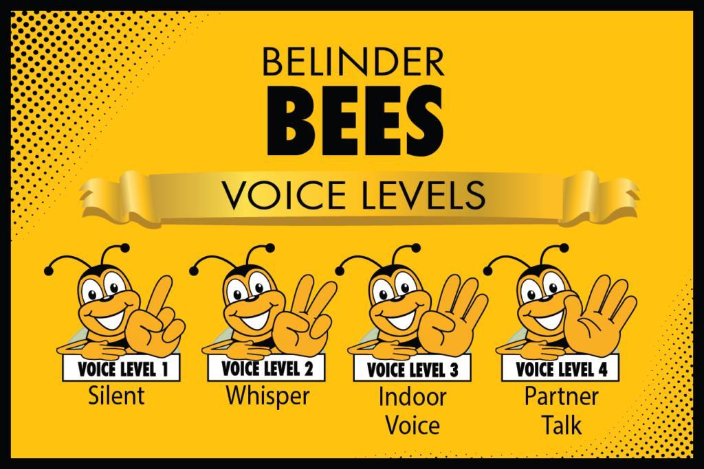 Voice Levels Poster Plaquette