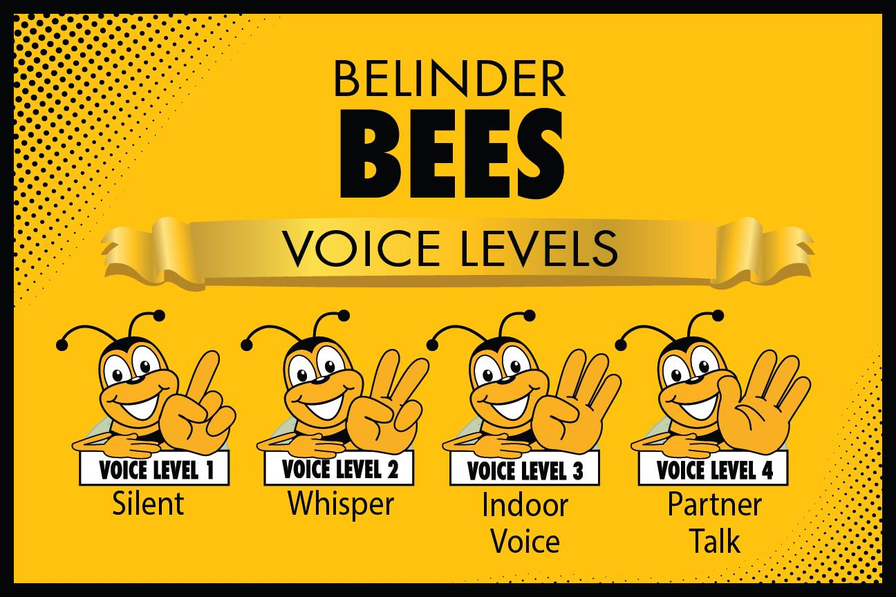 Voice Levels_Poster -01