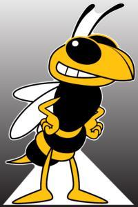Hornet Standee