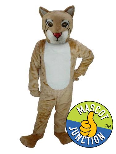 Bobcat Cub 1