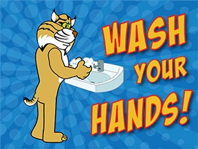 Wash Hands Bobcat