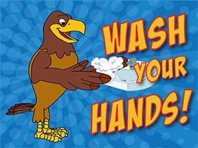Wash Hands Falcon2