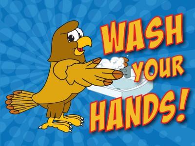Wash Hands Hawk