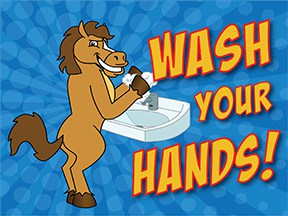 Wash Hands Horse