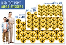 Bird Feet Floor Stickers