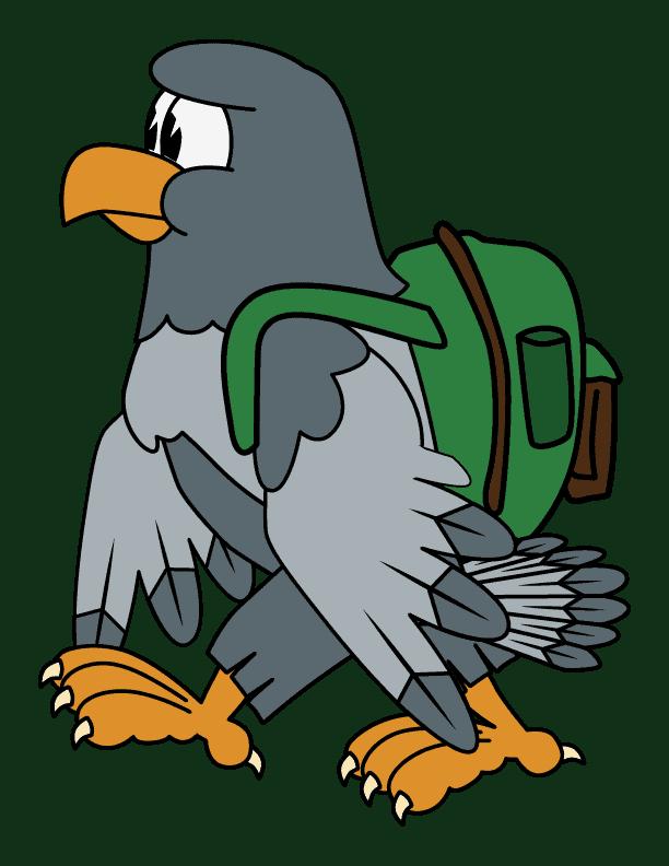 Falcon - Gray